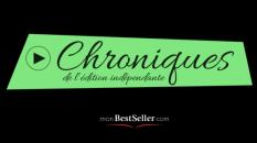monBestseller-itineraire-d'un-auteur-pour-se-faire-editer-un-reve- un-cauchemar