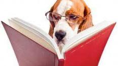 Vos lecteurs proches sont-ils impartiaux ?