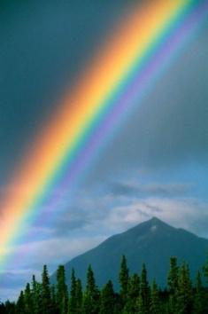 """Lire en ligne le roman """"Chroniques spirituelles"""" de Lueur"""