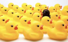Lire en ligne l'ebook gratuit Les vilains petits canards d'Antoine Solaire