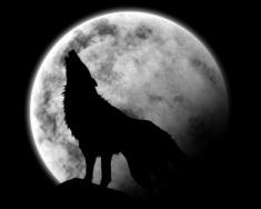 Lune Blanche à la St Sylvestre par Parthemise33