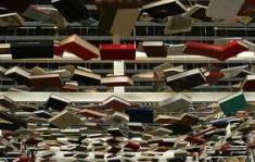 le salon du livre est il un salon professionnel ou un salon grand public?