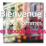 Les Bouquinautes